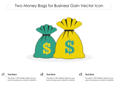 Two Money Bags For Business Gain Vector Icon Ppt PowerPoint Presentation Gallery Template PDF