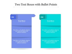 Two Text Boxes With Bullet Points Ppt PowerPoint Presentation Pictures Design Ideas PDF