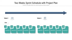 Two Weeks Sprint Schedule With Project Plan Ppt Inspiration Aids PDF