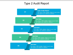 Type 2 Audit Report Ppt PowerPoint Presentation Model Styles Cpb Pdf
