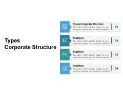 Types Corporate Structure Ppt PowerPoint Presentation Professional Summary Cpb
