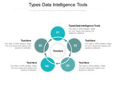 Types Data Intelligence Tools Ppt PowerPoint Presentation Pictures Icon Cpb