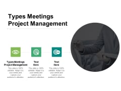 Types Meetings Project Management Ppt PowerPoint Presentation Infographics Icon Cpb