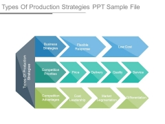 Types Of Production Strategies Ppt Sample File