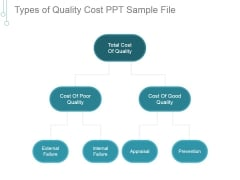 Types Of Quality Cost Ppt PowerPoint Presentation Themes