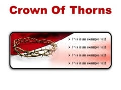 Thorns Of Crown Religion PowerPoint Presentation Slides R