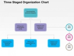 Three Staged Organization Chart PowerPoint Template