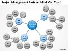 Timeline Project Management Business Mind Map Chart