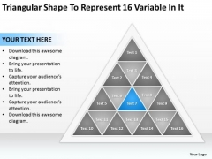Triangular Shape To Represent 16 Variable In It Sample Business Plans Free PowerPoint Slides