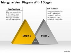 Triangular Venn Diagram With 1 Stages Ppt Carpet Cleaning Business Plan PowerPoint Slides