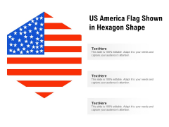 US America Flag Shown In Hexagon Shape Ppt PowerPoint Presentation File Information PDF