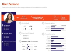 Understanding Business REQM User Persona Ppt Show Shapes PDF