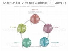 Understanding Of Multiple Disciplines Ppt Examples