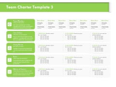Understanding Organizational Structures Team Charter Values Ppt Gallery Backgrounds PDF