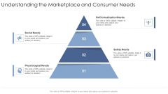 Understanding The Marketplace And Consumer Needs Social Startup Business Strategy Ppt Model Skills PDF