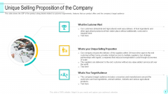 Unique Selling Proposition Of The Company Summary PDF