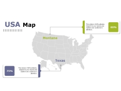 Usa Map Ppt PowerPoint Presentation Styles Example File