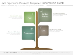 User Experience Business Template Presentation Deck