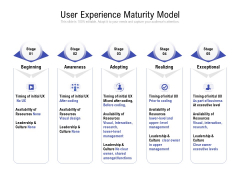 User Experience Maturity Model Ppt PowerPoint Presentation Slides Icons