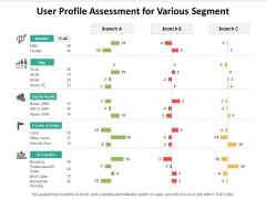 User Profile Assessment For Various Segment Ppt PowerPoint Presentation Icon Microsoft PDF