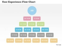 User Experience Flow Chart Presentation Template