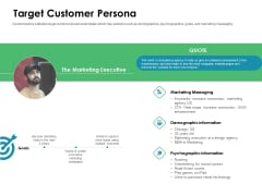 Value Creation Initiatives Target Customer Persona Ppt Pictures Demonstration PDF
