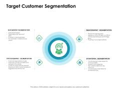 Value Creation Initiatives Target Customer Segmentation Ppt Gallery Background Designs PDF