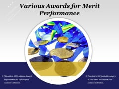 Various Awards For Merit Performance Ppt PowerPoint Presentation File Deck PDF
