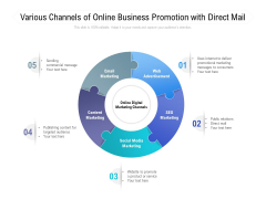 Various Channels Of Online Business Promotion With Direct Mail Ppt PowerPoint Presentation Portfolio Infographic Template