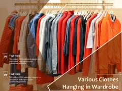 Various Clothes Hanging In Wardrobe Ppt PowerPoint Presentation Icon Show PDF