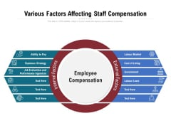 Various Factors Affecting Staff Compensation Ppt PowerPoint Presentation Icon Slides PDF