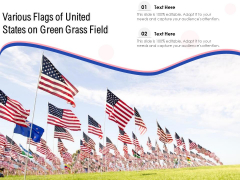 Various Flags Of United States On Green Grass Field Ppt PowerPoint Presentation Infographic Template Outline PDF