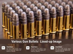 Various Gun Bullets Lined Up Image Ppt PowerPoint Presentation Ideas Example PDF