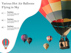 Various Hot Air Balloons Flying In Sky Ppt PowerPoint Presentation Model Microsoft PDF