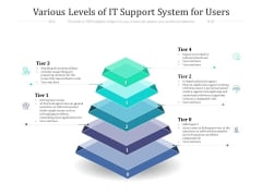 Various Levels Of IT Support System For Users Ppt PowerPoint Presentation Slides Graphics Download PDF