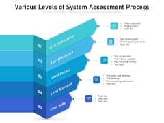 Various Levels Of System Assessment Process Ppt PowerPoint Presentation Pictures Summary PDF