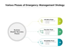 Various Phases Of Emergency Management Strategy Ppt PowerPoint Presentation Gallery Layout PDF