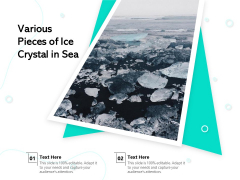 Various Pieces Of Ice Crystal In Sea Ppt PowerPoint Presentation Gallery Examples PDF