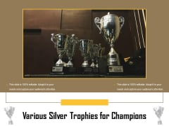 Various Silver Trophies For Champions Ppt PowerPoint Presentation Layouts Maker PDF