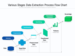 Various Stages Data Extraction Process Flow Chart Ppt PowerPoint Presentation Pictures Show PDF