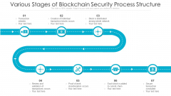 Various Stages Of Blockchain Security Process Structure Ppt PowerPoint Presentation Ideas Information PDF