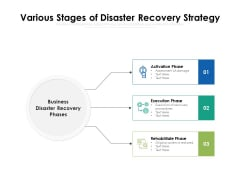 Various Stages Of Disaster Recovery Strategy Ppt PowerPoint Presentation File Guidelines PDF