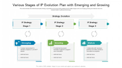 Various Stages Of IP Evolution Plan With Emerging And Growing Ppt Infographic Template Display PDF