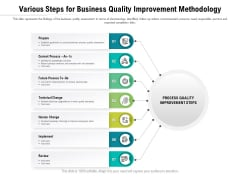 Various Steps For Business Quality Improvement Methodology Ppt PowerPoint Presentation File Visual Aids PDF