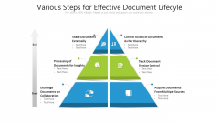 Various Steps For Effective Document Lifecyle Sample PDF
