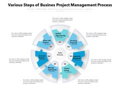 Various Steps Of Busines Project Management Process Ppt PowerPoint Presentation Infographics Designs PDF