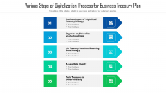 Various Steps Of Digitalization Process For Business Treasury Plan Ppt Professional Aids PDF