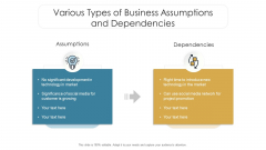 Various Types Of Business Assumptions And Dependencies Ppt Model Slideshow PDF