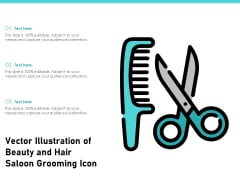 Vector Illustration Of Beauty And Hair Saloon Grooming Icon Ppt PowerPoint Presentation Gallery Samples PDF