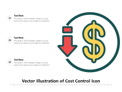 Vector Illustration Of Cost Control Icon Ppt PowerPoint Presentation File Design Templates PDF